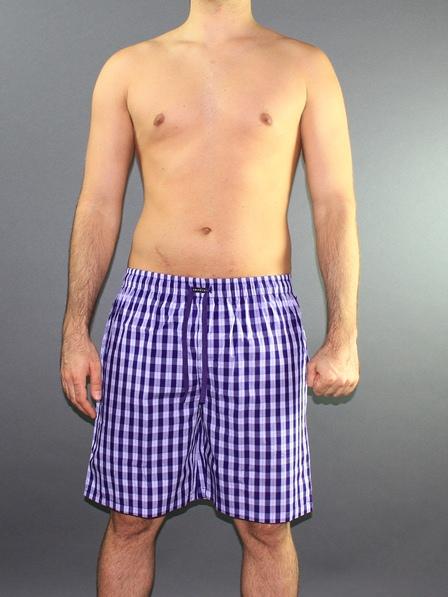 Мужские шорты домашние Impetus 1275598 сине-фиолетовые в клеточку